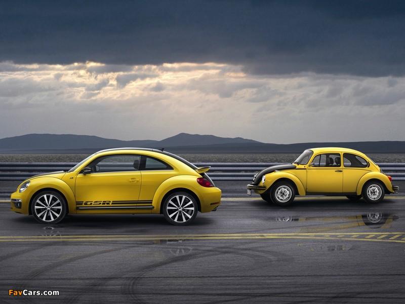 Volkswagen Beetle / Käfer photos (800 x 600)