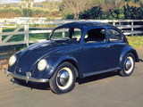 Volkswagen Beetle / Käfer pictures