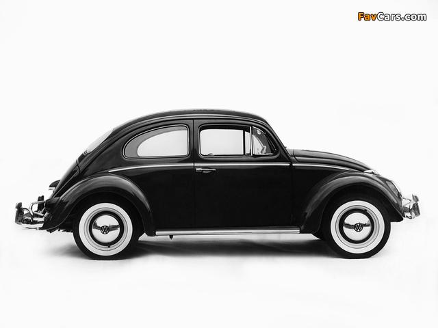 Volkswagen Beetle 1962–68 wallpapers (640 x 480)