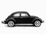 Volkswagen Beetle 1962–68 wallpapers