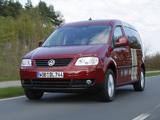 Pictures of Volkswagen Caddy Tramper Maxi (Type 2K) 2007–10