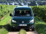 Volkswagen Caddy Maxi (Type 2K) 2010 wallpapers