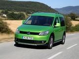 Volkswagen Cross Caddy (Type 2K) 2012 images