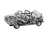 Volkswagen Golf Cabrio (Typ 17) 1979–88 photos