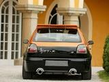 Hofele Design Volkswagen Golf 3-door (Typ 1H) pictures