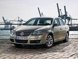 Volkswagen Jetta Freestyle (Typ 1K) 2010 photos