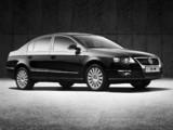 Volkswagen Magotan 2007–11 pictures