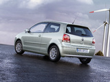 Volkswagen Polo BlueMotion (Typ 9N3) 2006–09 wallpapers