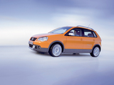 Volkswagen CrossPolo (Typ 9N3) 2006–09 wallpapers
