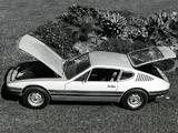 Volkswagen SP2 1972–76 photos