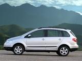 Volkswagen SpaceFox 2006–10 images