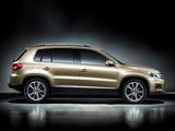 Volkswagen Tiguan CN-spec 2009 pictures