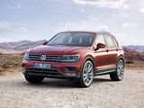 Volkswagen Tiguan 2015 pictures