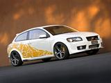 Heico Sportiv Volvo C30 Concept 2006 wallpapers
