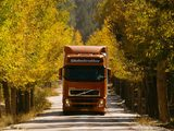 Volvo FH12 4x2 2002–05 wallpapers