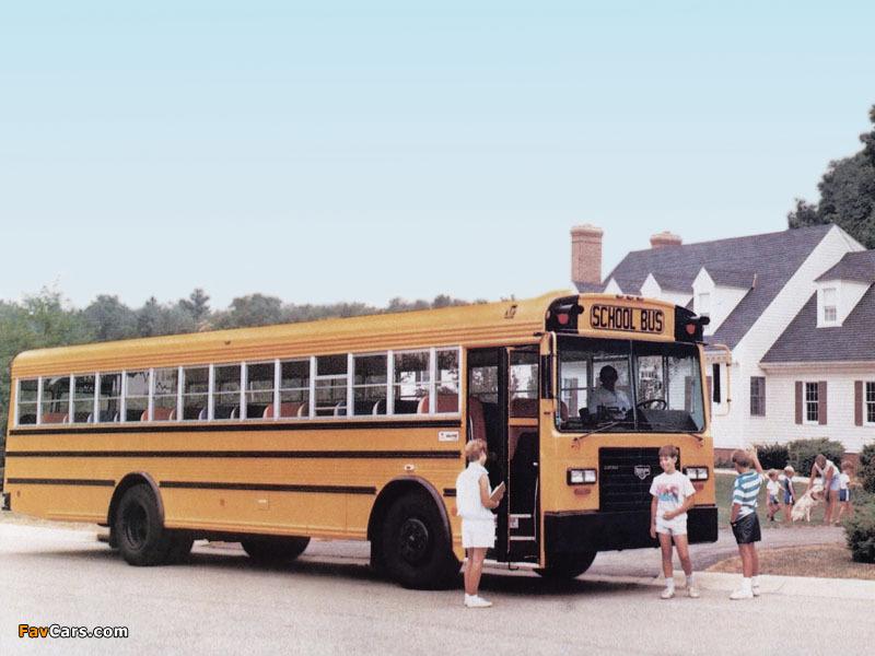 Wayne Lifestar FE School Bus 1986 photos (800 x 600)