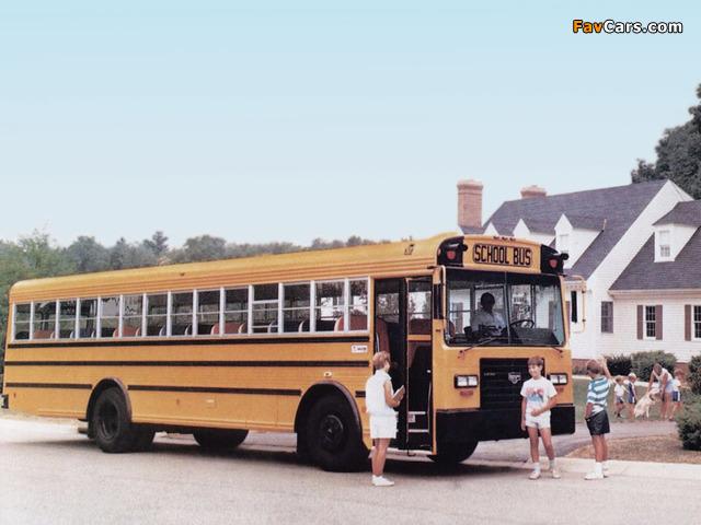 Wayne Lifestar FE School Bus 1986 photos (640 x 480)