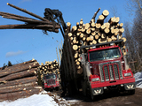 Images of Western Star 4900 FA Logging Truck 2008