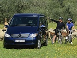 Mercedes-Benz Viano Marco Polo by Westfalia (W639) 2004–10 photos