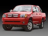 Photos of ZXAuto Grandtiger 2006–11